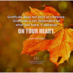 Leadership Gratitude: Image is pictoquote about gratitude.
