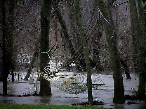 Leadership Reset: Image is hammock in a rainy woods.