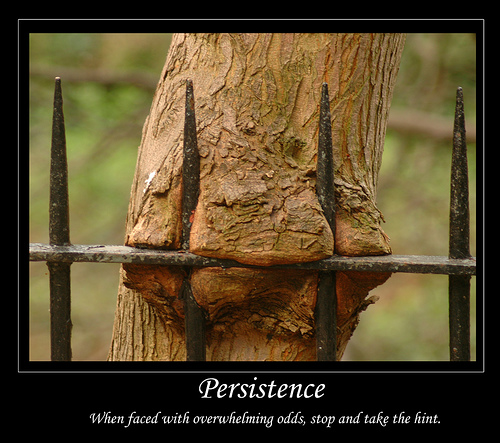 Persistence. Image is Tree trunk up against iron fence.