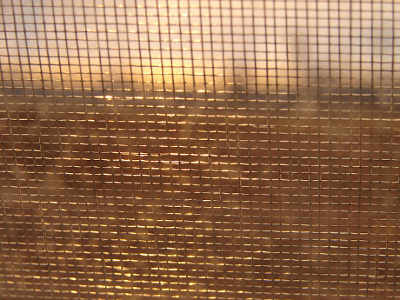 Responsible Authenticity: Image is mesh screen with sunset behind.