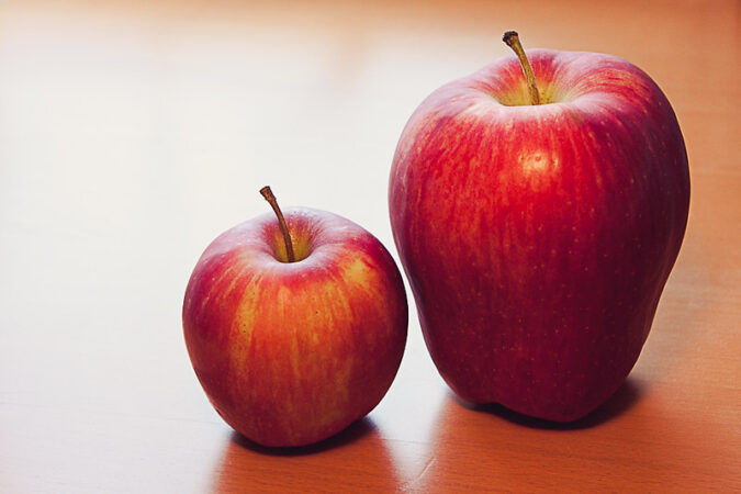 Servant Leader: Image is a small apple and a larger apple.