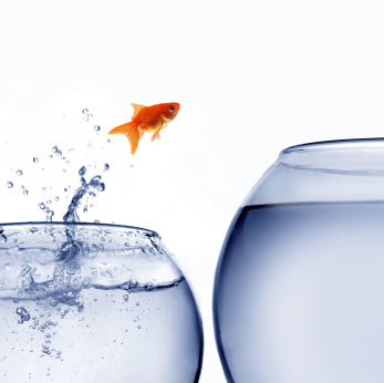 Leading Change: Image is fish jumping from one glass to the next.